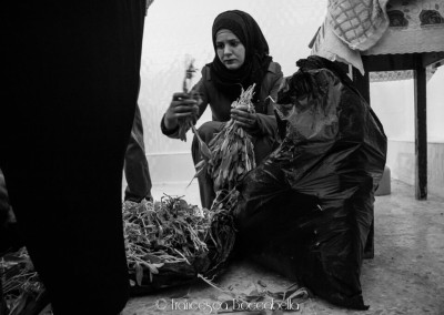 Reportage Palestina-112
