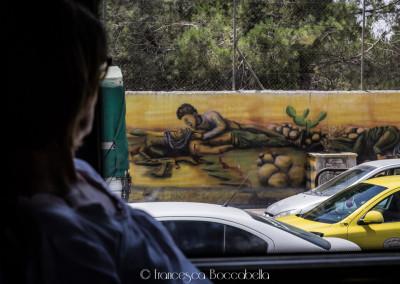 Reportage Palestina-4