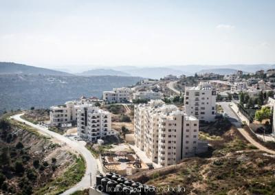 Reportage Palestina-8
