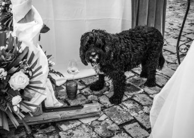 Francesca Boccabella- foto matrimonio- Marco e Valentina-63